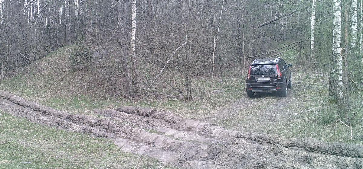 Нарушение запрета посещения лесов, в пожароопасный период. Фото: Александр СЕЛИВОНЧИК.