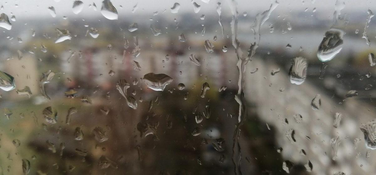 Какой будет погода в Барановичах в четверг, 27 августа