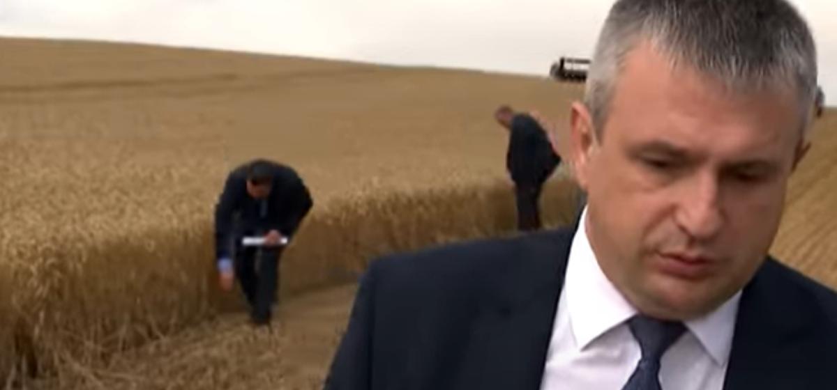 Перед прилетом Лукашенко с колосками на поле произвели странные манипуляции
