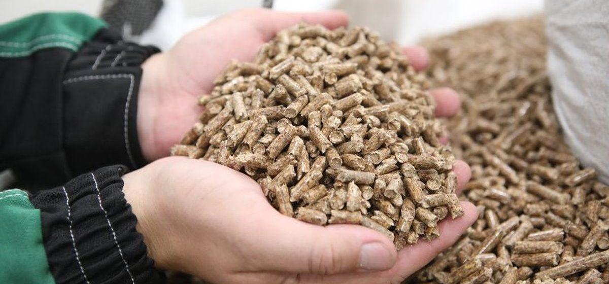 Барановичский лесхоз планирует построить завод по производству пеллетных гранул