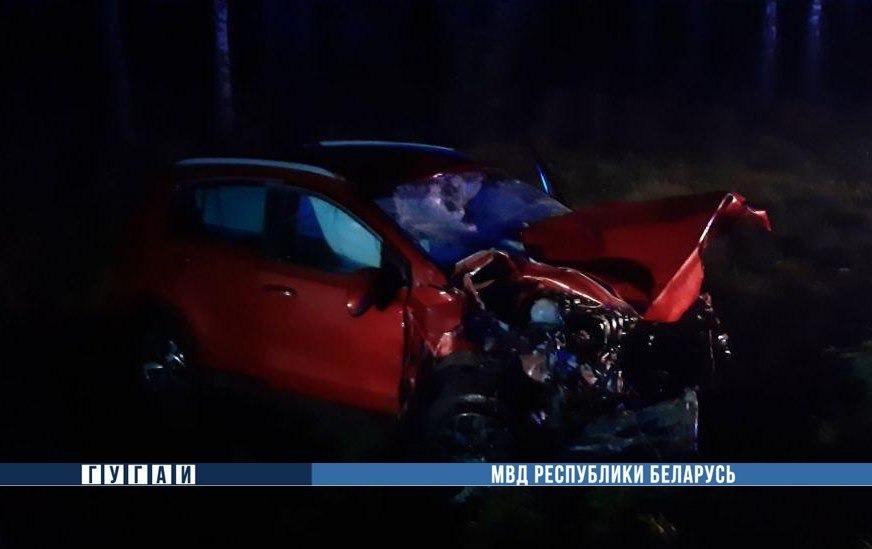 Под Минском Peugeot сбил лося, выехал на встречку и врезался в Kia: погибли три человека
