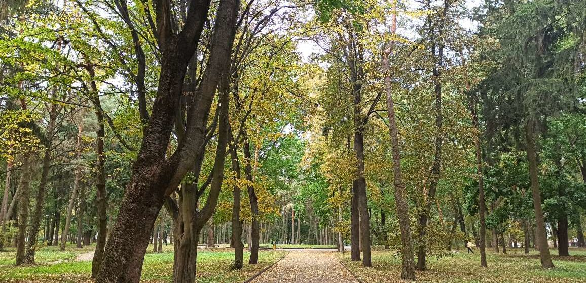 Каким будет первый день октября? Прогноз погоды в Барановичах