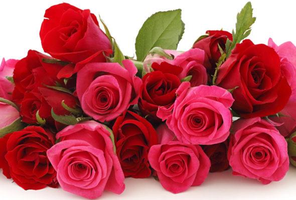 Букет роз – всегда шикарный подарок