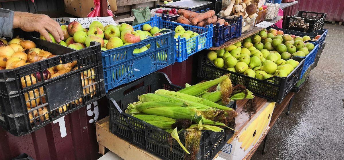Что почем. На барановичском рынке подорожали огурцы и нектарины, дешевле стали грибы и дыни
