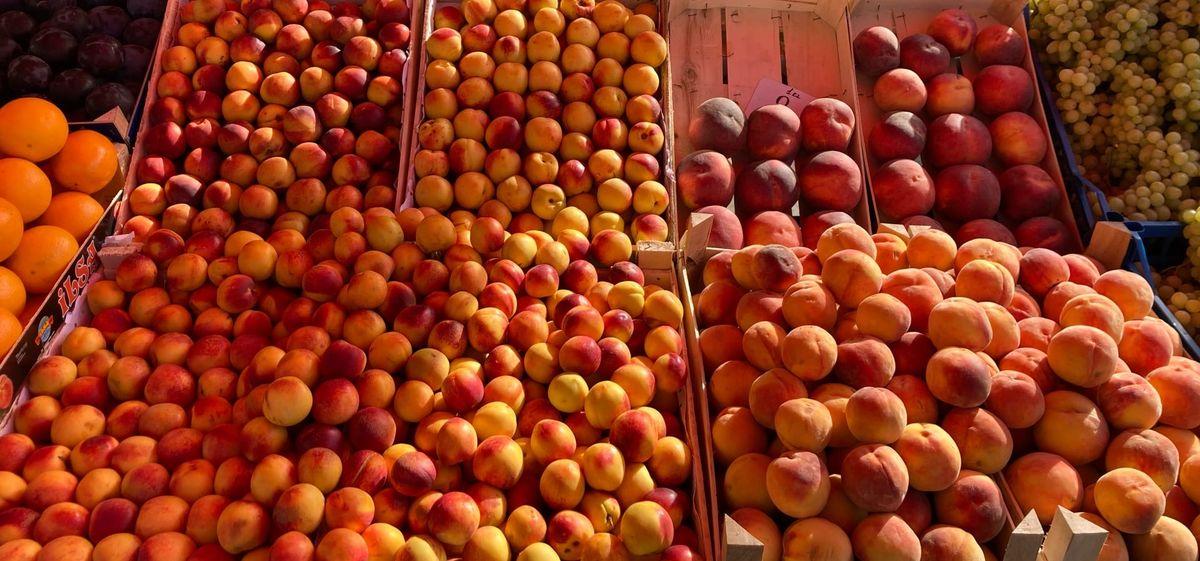 Что почем. На барановичском рынке подорожали огурцы и персики, появились клюква, гранат и много лесных грибов