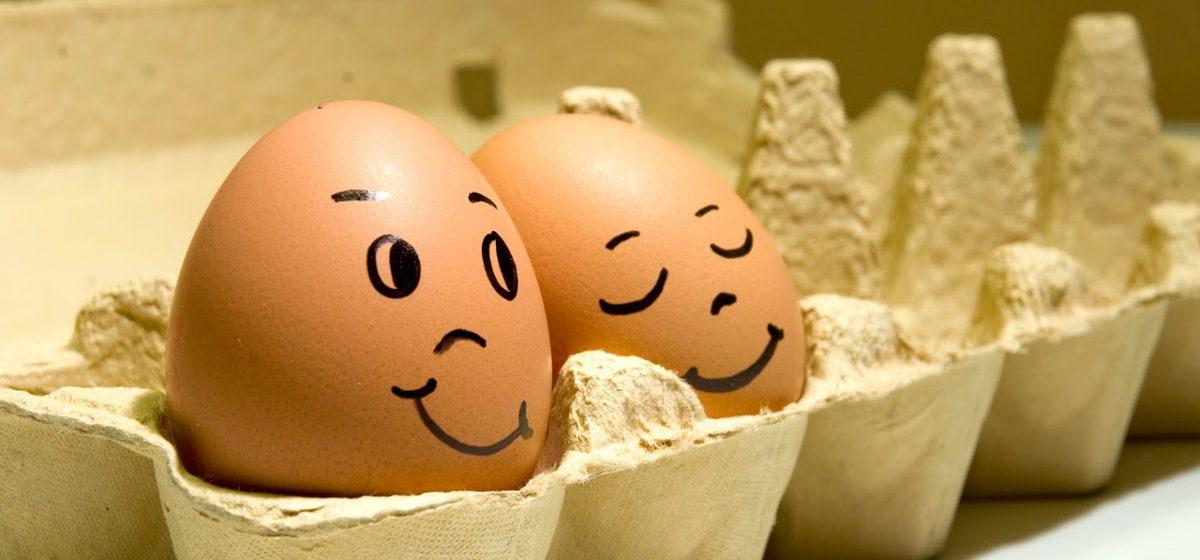 Всемирный день яйца отмечается 9 октября. Интересные факты о яйцах и рецепты блюд