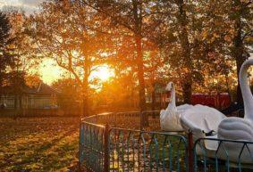 Что изменится в ноябре для жителей Барановичей и всех белорусов