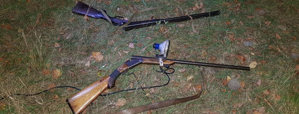 Сафари на мотоцикле устроили браконьеры в Ляховичском районе, убили косулю, а потом бежали в кукурузу