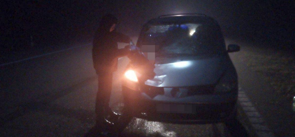 Пешеход погиб на трассе М1 под Барановичами