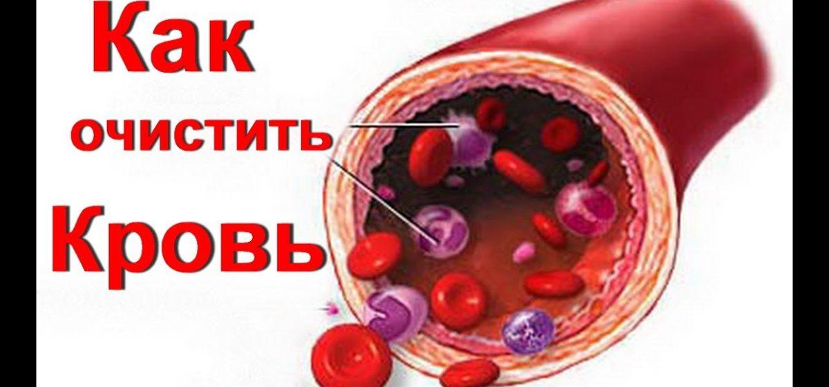 Медики рассказали, как очистить кровь от лишнего сахара и холестерина