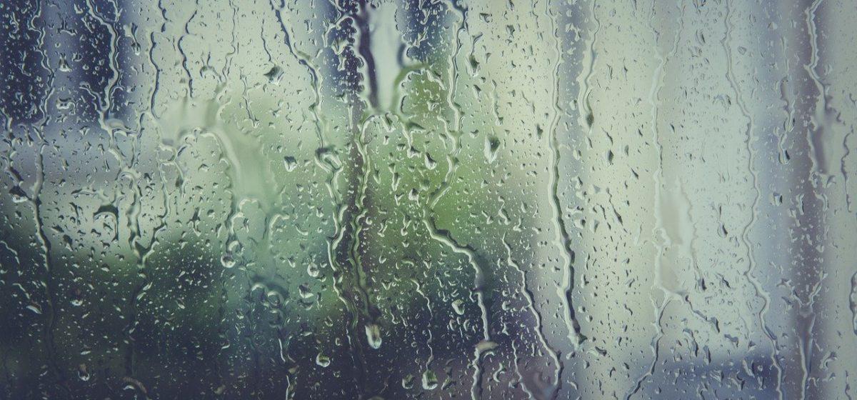 Ждать дождь и туман в Барановичах? Прогноз погоды на 27-29 октября