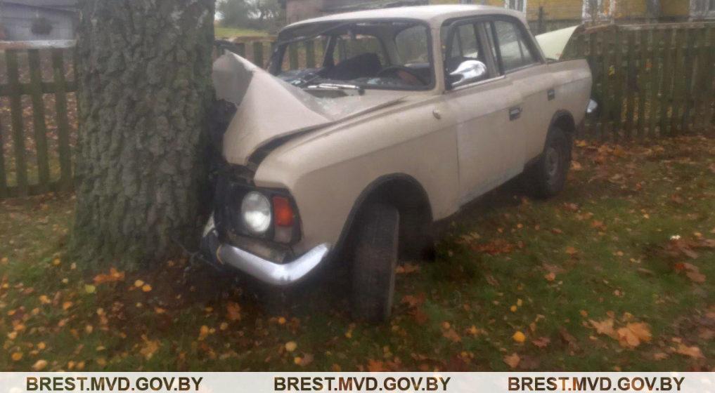 Под Ляховичами бесправник влетел на «Москвиче» в дерево. Он и пассажиры – в больнице