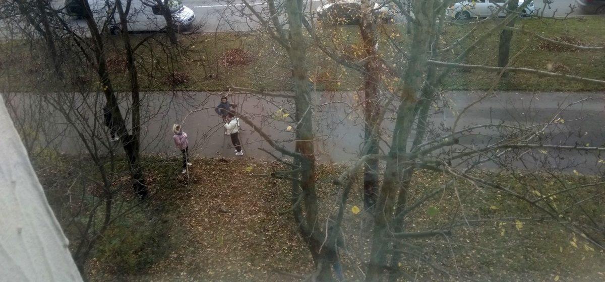 Школьников заставляют убирать листья. Это законно?