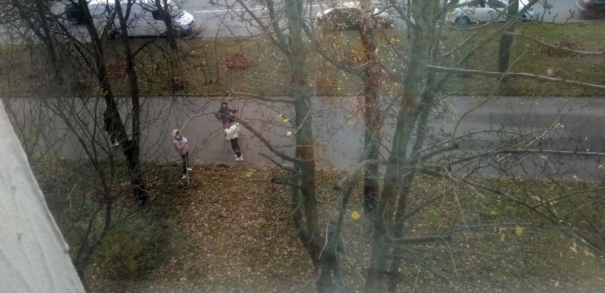 Школьники убирают листья, фото: Ребёнок BY