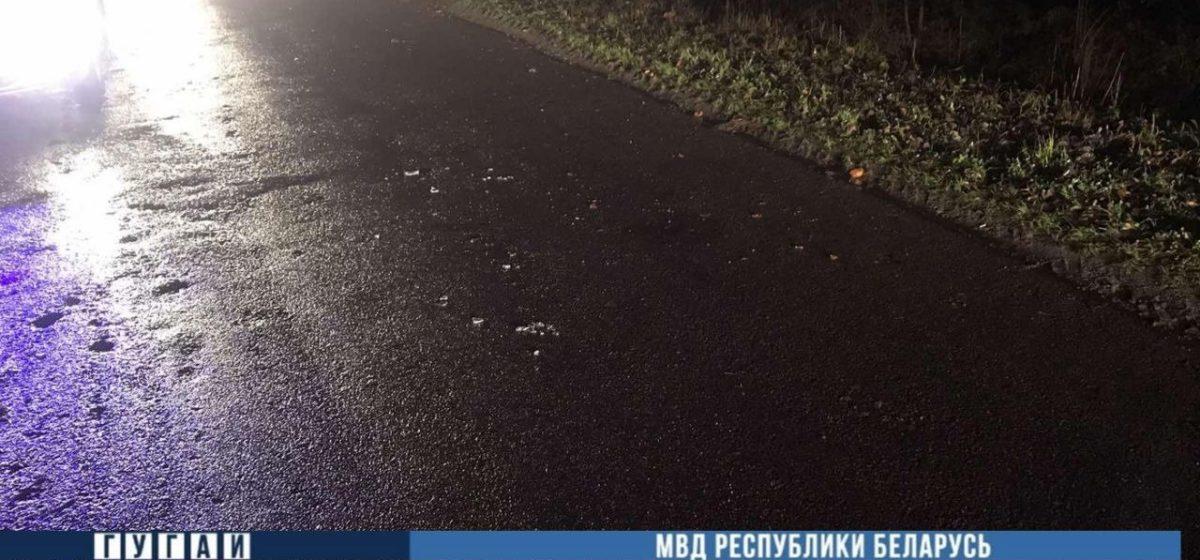 Бесправник на мотоцикле вылетел в кювет под Ляховичами