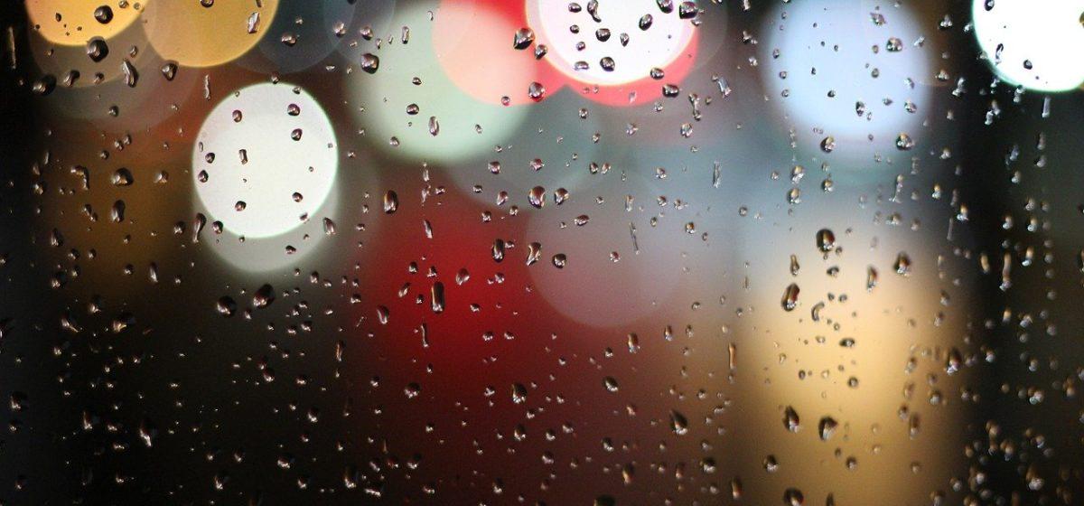 Дожди и порывистый ветер. Прогноз погоды на 17–19 ноября в Барановичах
