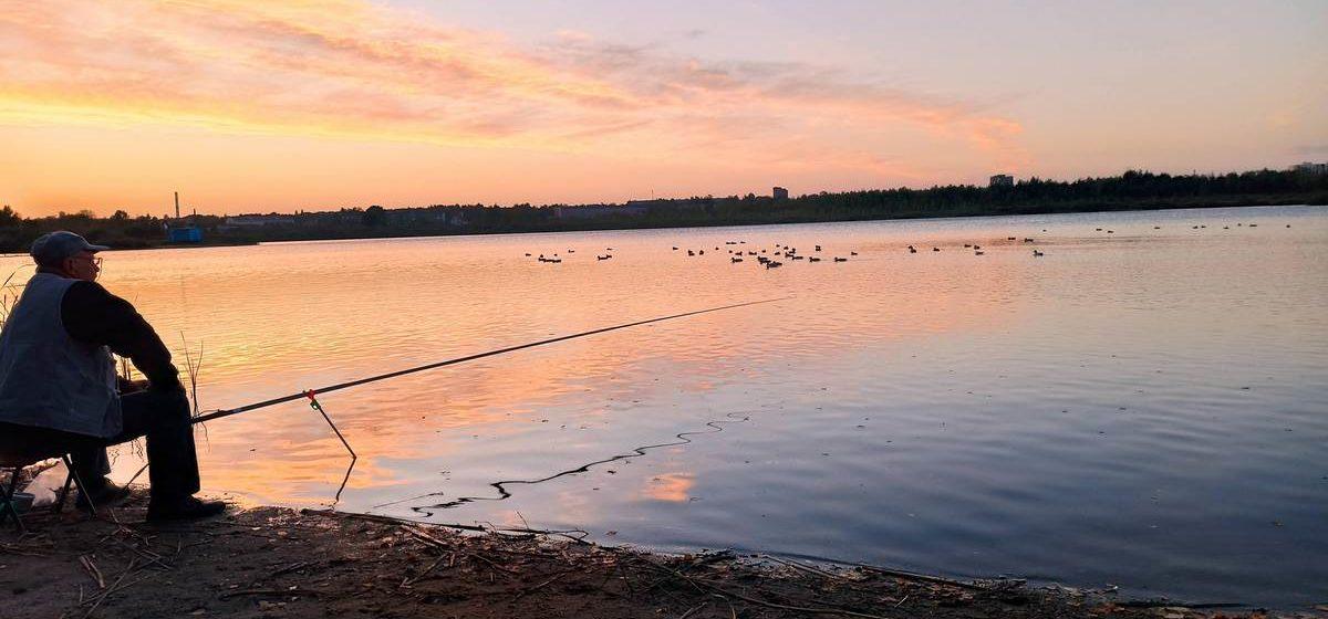 Четыре водоема Брестчины зарыбят этой осенью. Читайте какие