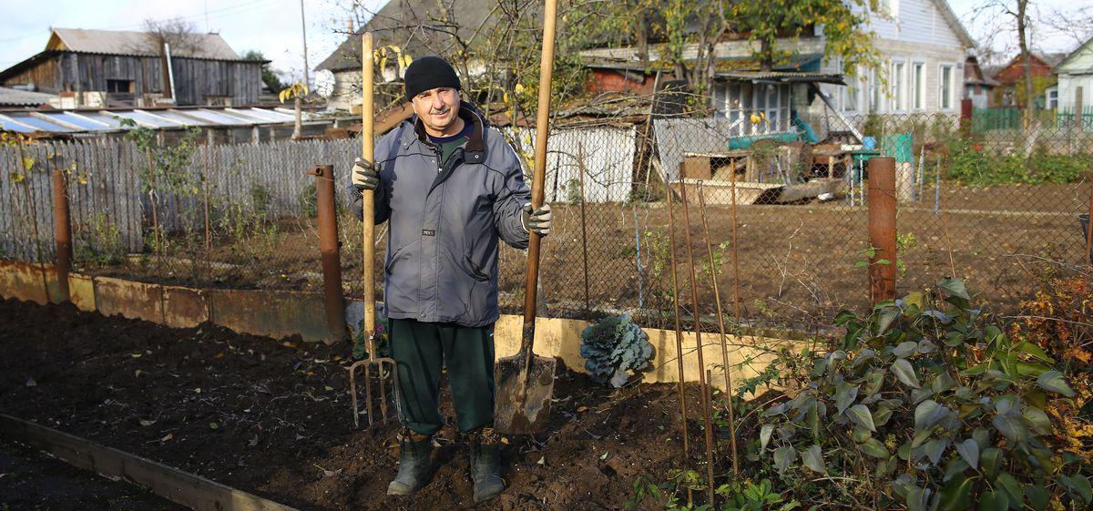 какая почва в огороде