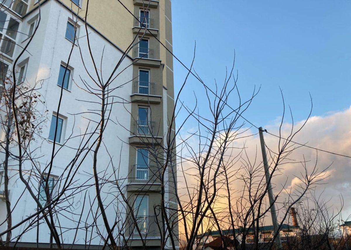 За время строительства многоэтажного дома деревья выросли настолько, что достают до проводов. Фото: Ирина КОМИК
