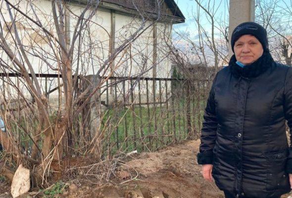 Кто должен убрать? Жительница Барановичей жалуется на оставленные заросли на соседнем участке, где возвели многоэтажку