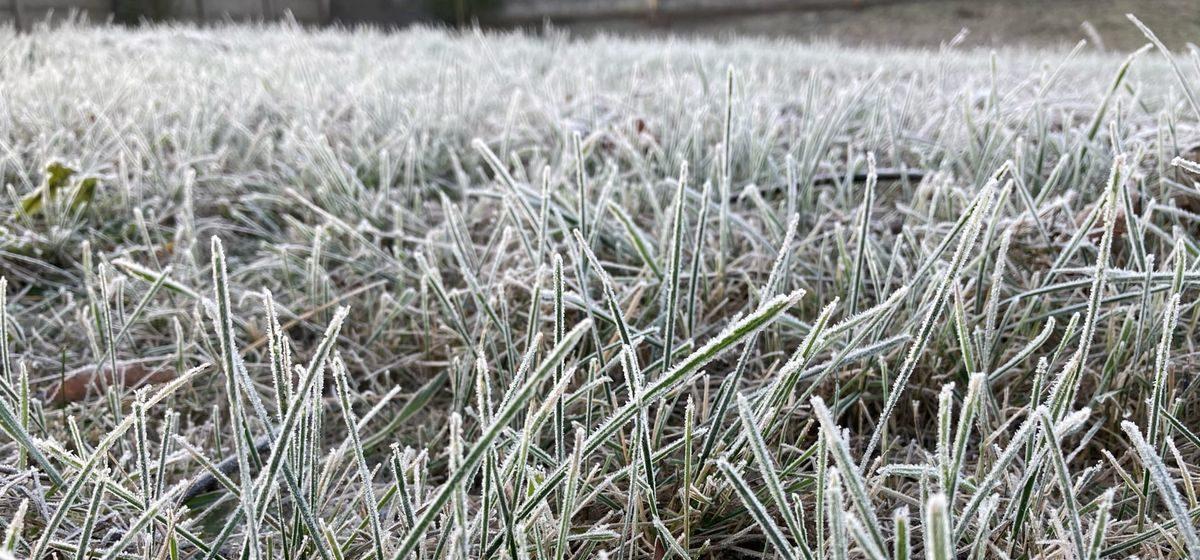 Ждать заморозки или потепление? Прогноз погоды на 24-26 ноября в Барановичах