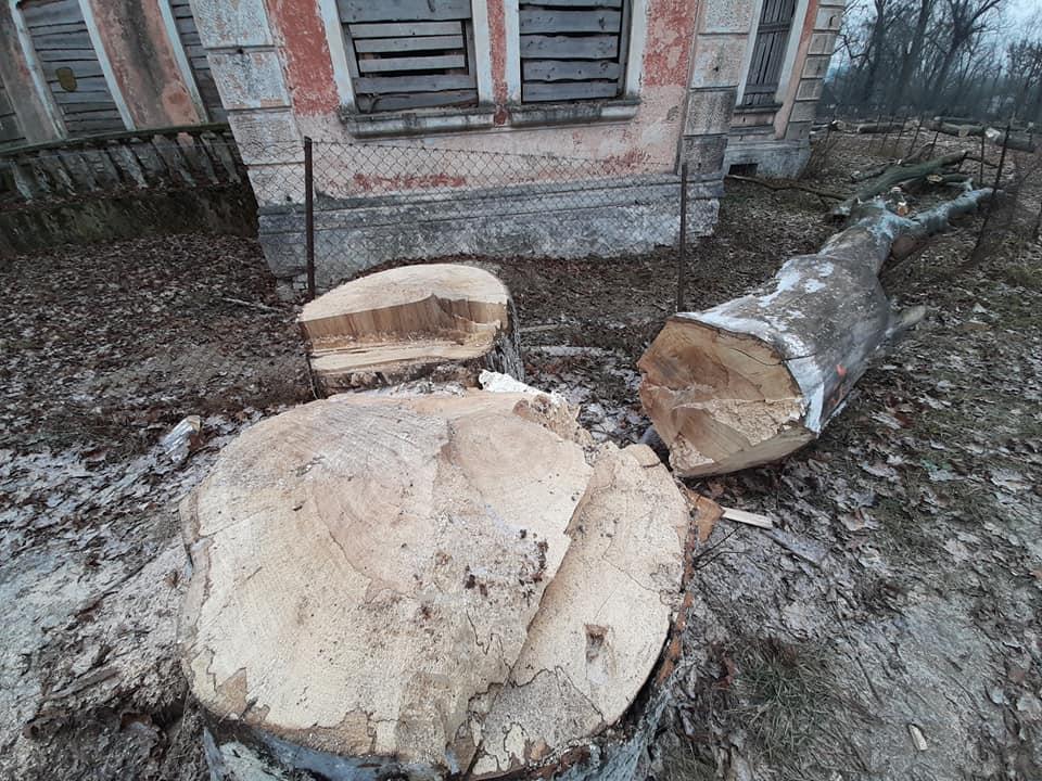 Усадьба Котлубаев в деревне Ястрембель Барановичского района. Фото: Владимир ЗУЕВ