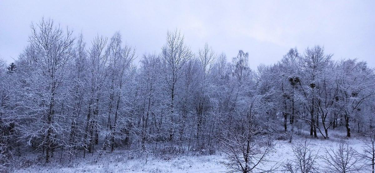 Грядут морозы. Прогноз погоды в Барановичах на ближайшие дни