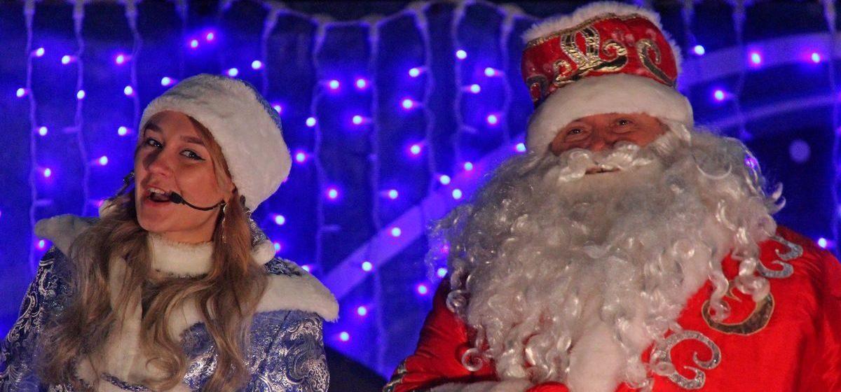 В Барановичах открыли главную новогоднюю елку города. Фоторепортаж