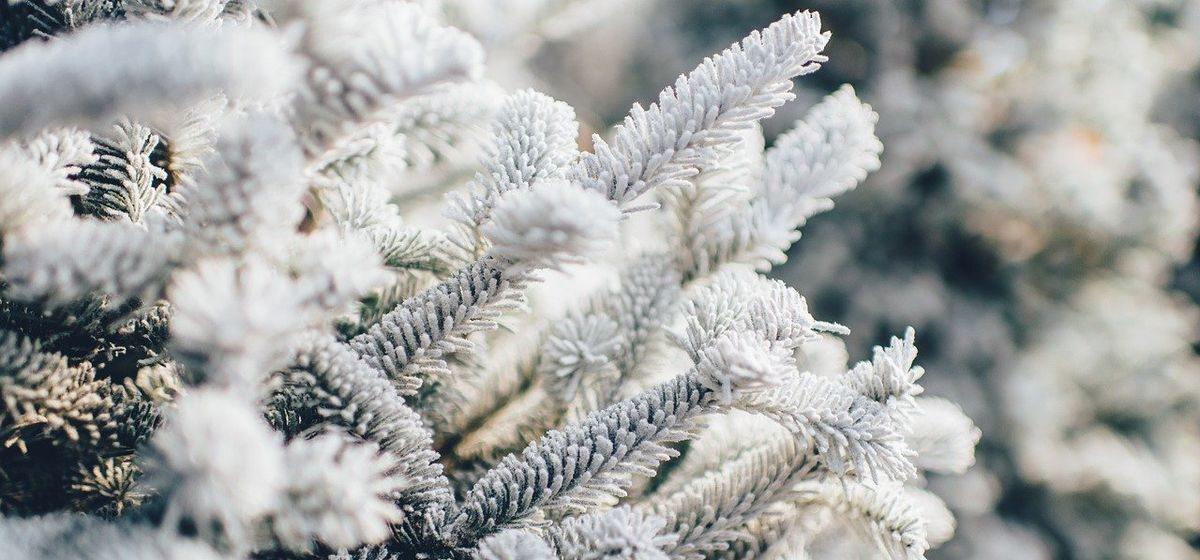 Потепления ждать не стоит? Прогноз погоды на 13–15 февраля в Барановичах