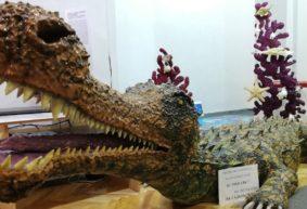 Выставка «Тайны древнего океана» откроется в Барановичах