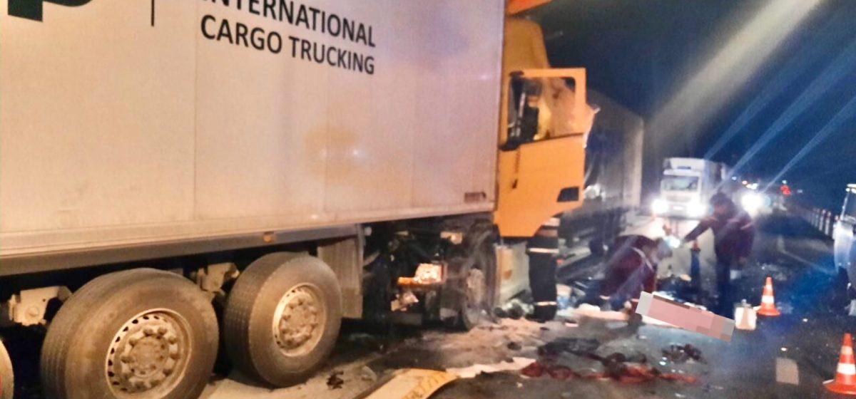 Фура влетела в стоящий грузовик в Витебской области – водитель погиб