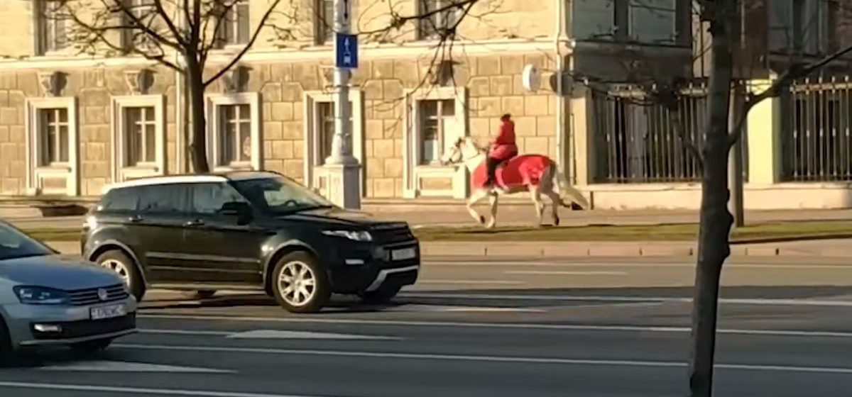 Бело-красно-белого всадника заметили в центре Минска. Видеофакт