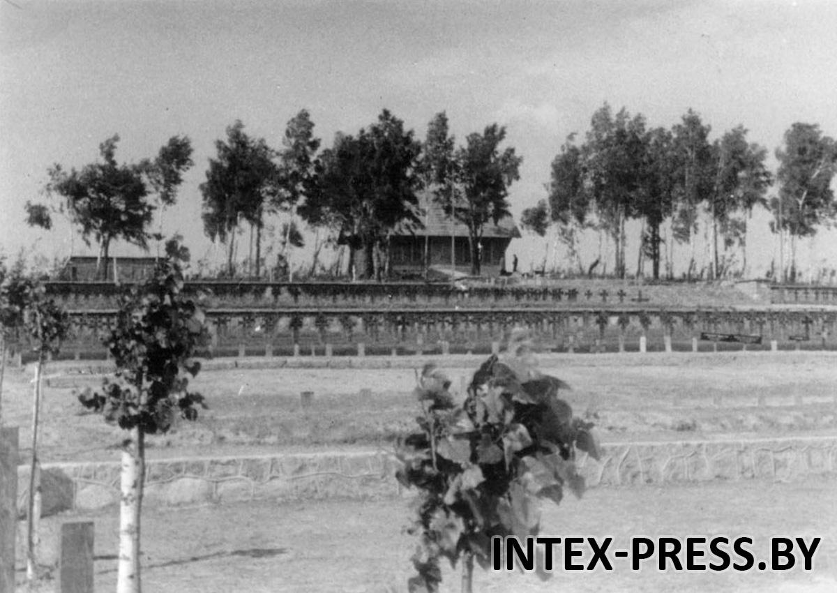 Барановичи. Саженцы тополей на кладбище в Северном, 1943 год. Фото: Instagram @baranavichy_