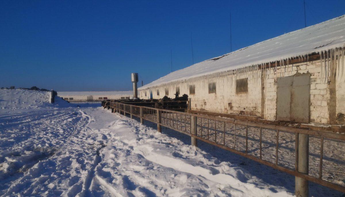 Фото: МЧС Брестской области