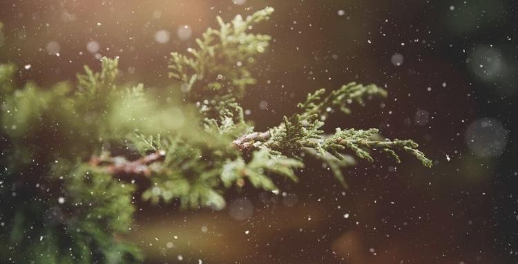 Выпадет ли снег к Рождеству в Барановичах? Прогноз на 5-7 января