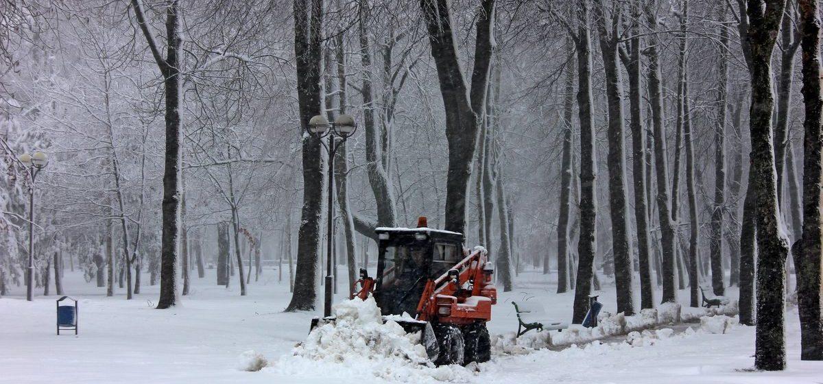 В «Белэнерго» рассказали, сколько населенных пунктов из-за циклона остались без света