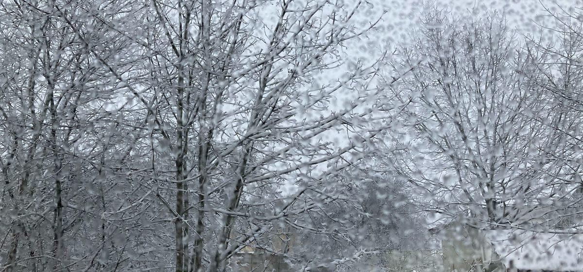 Потеплеет или вновь засыплет снегом? Прогноз на 30 января – 1 февраля в Барановичах