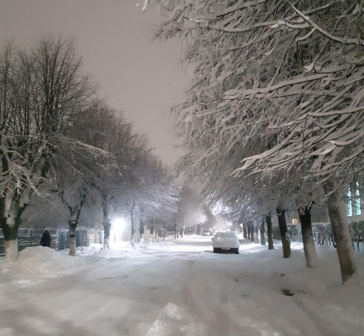 Фото: Наталья КУПРИК (ТИУНЧИК)