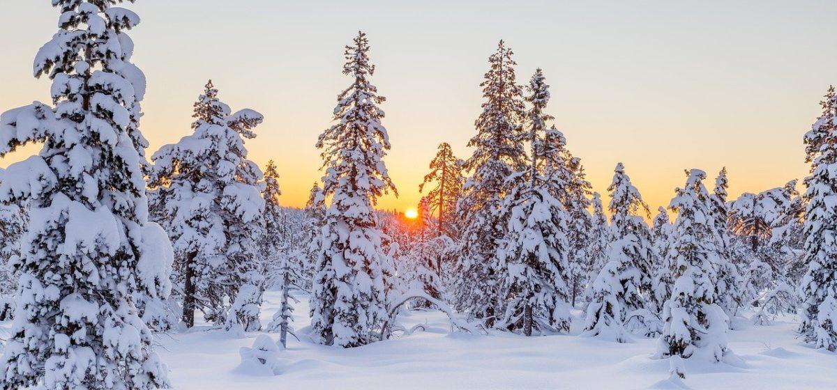 Двадцатиградусные морозы надвигаются на Барановичи. Прогноз погоды на 16–18 января