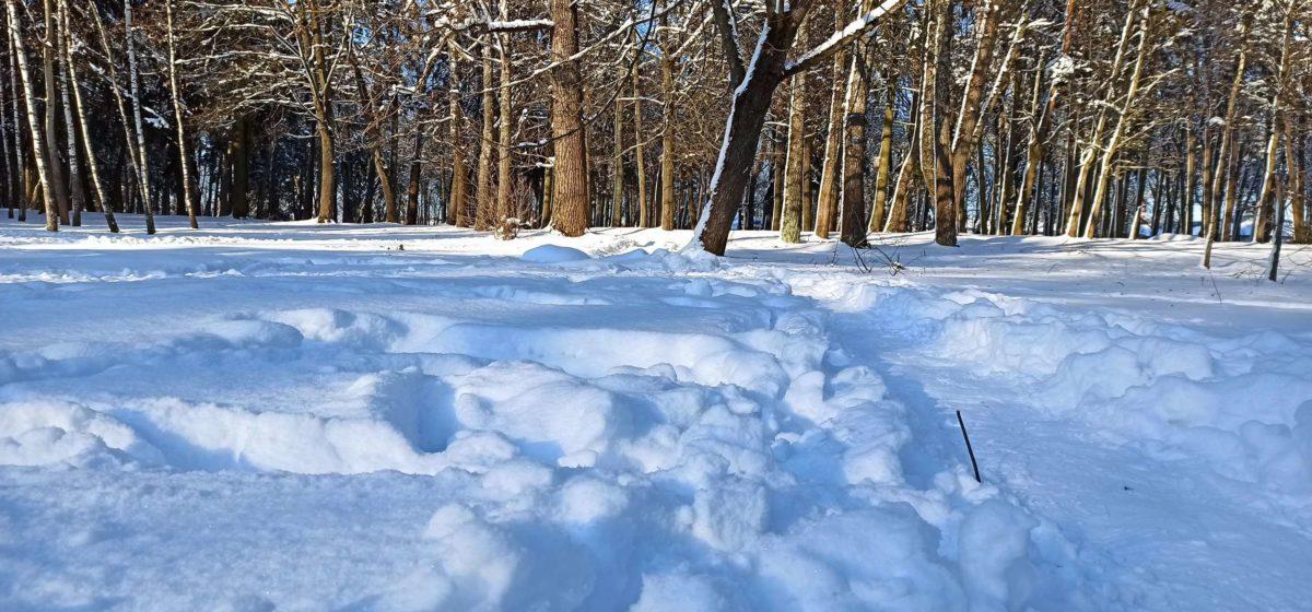 Неужели потепление? Прогноз погоды в Барановичах на выходные, 20–21 февраля