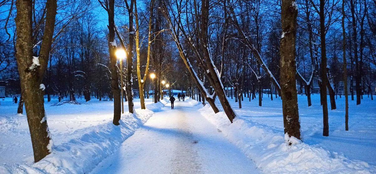 Завтра холоднее или потеплеет? Погода в Барановичах на 17 февраля