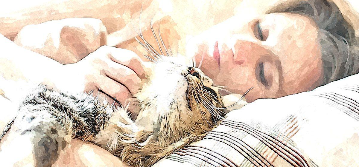 Три причины, почему одинокие женщины живут с котами