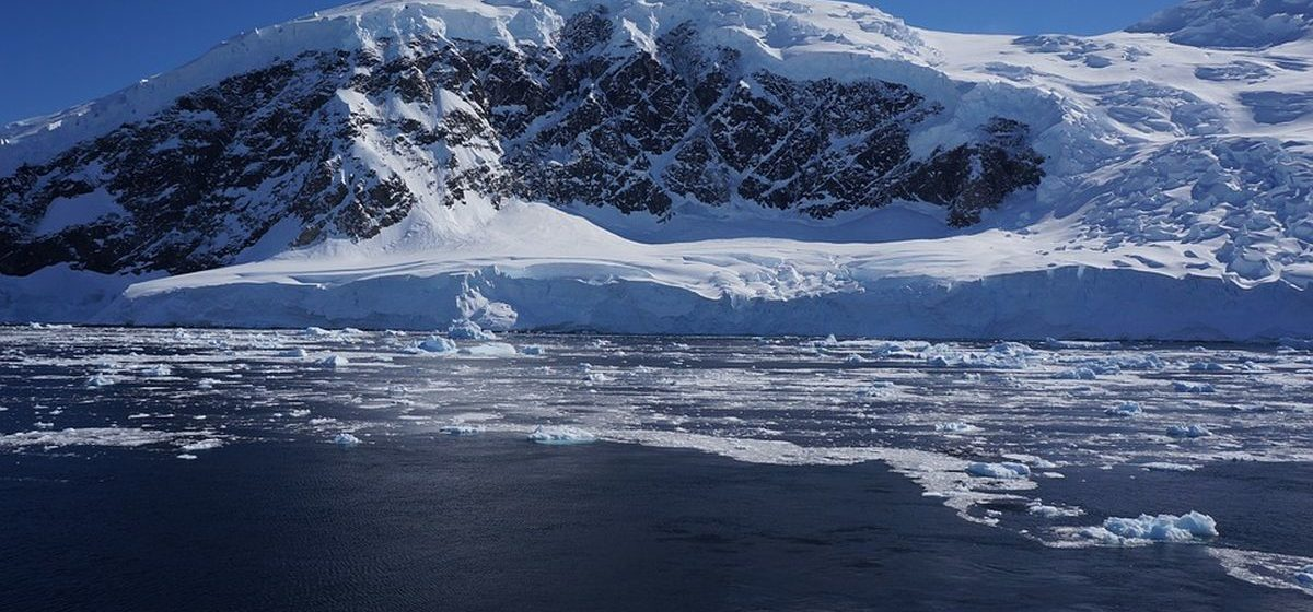 В ледниках Антарктиды ученые нашли неизвестных животных