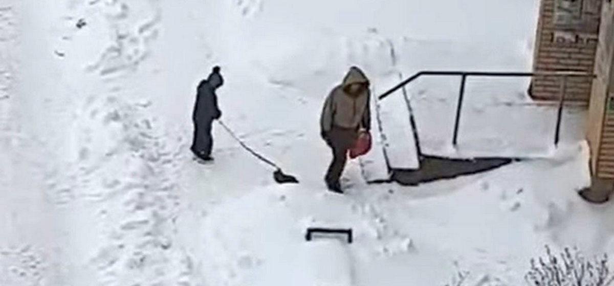 Ребенок вывел кота на прогулку в Новогрудке и жестко таскал животное за веревку по снегу. Видео