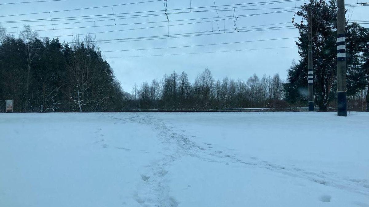 Тропа через ж/д пути, которую люди сами проложили возле урочища
