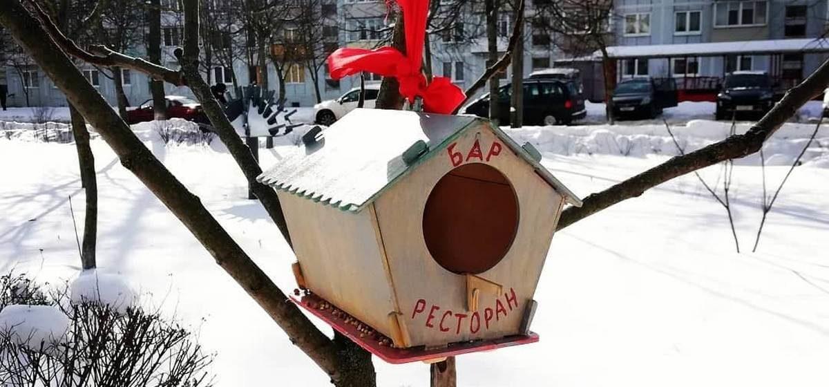 Заведение общепита открыли для птиц в Барановичах. Смешной фотофакт
