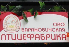 Первый цыпленок вылупился на Барановичской птицефабрике 50 лет назад. Воспоминания бывшего работника предприятия