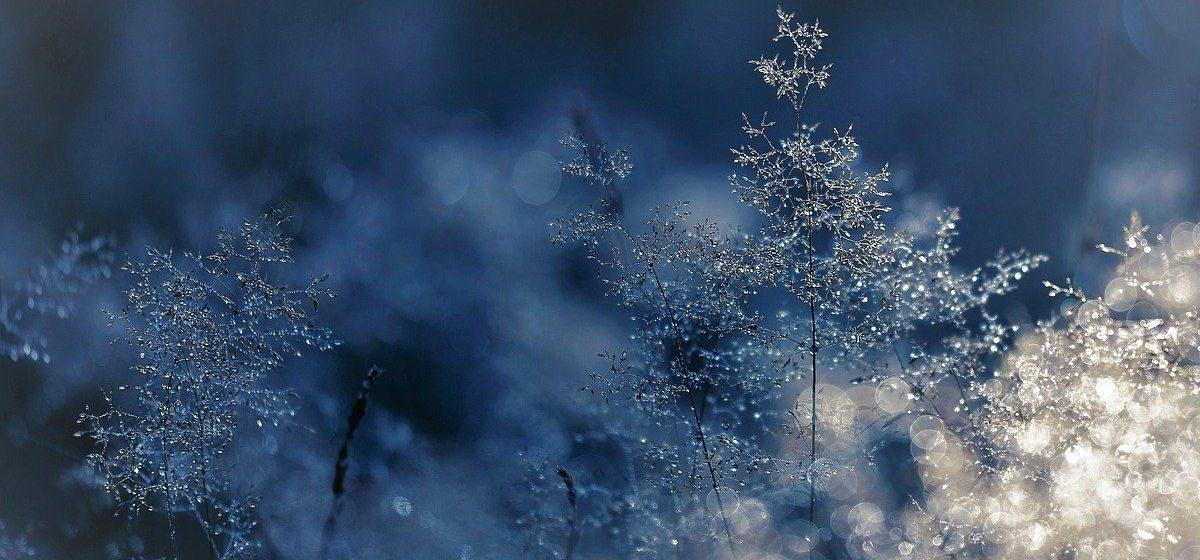 Будет холодно и вновь засыплет снегом? Прогноз погоды на 16-18 февраля в Барановичах