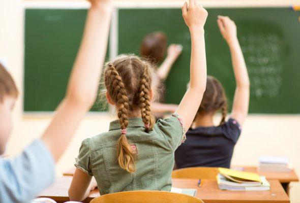 Отличие гимназии и общеобразовательной школы