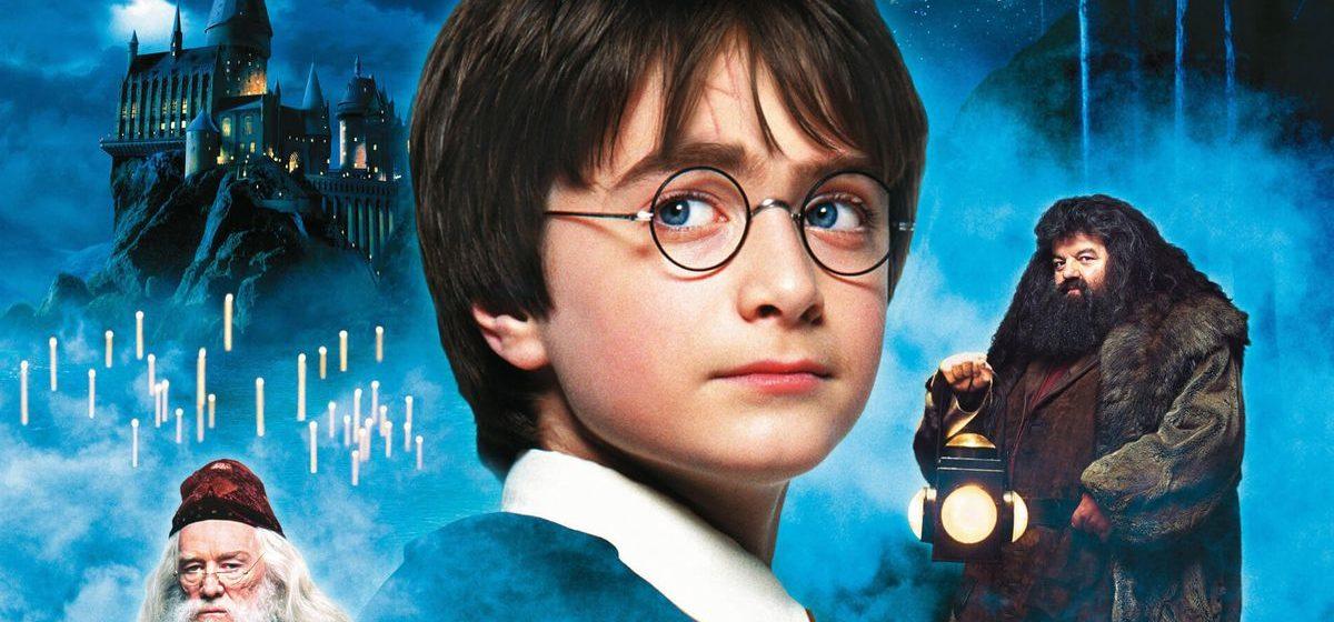 Гомельчанин от имени Гарри Поттера предоставил сведения в госорган. Вот как наказал его суд